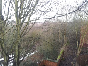 Looking down on the lower terrace and over the Elsecar Heritage Railway.