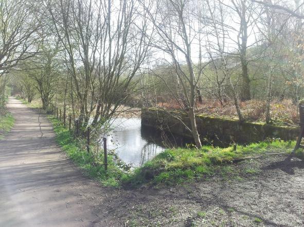 Hemingfield basin today (2019)