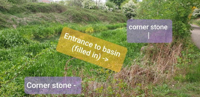 Image showing where the Elsecar branch meets the entrance to the Hemingfield basin (now filled in). The original cornerstones marking the entrance can still be seen amongst the undergrowth (indicated)